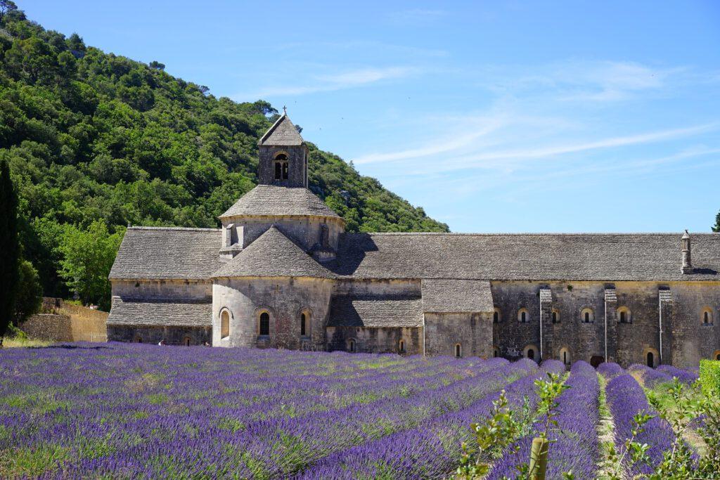 Abbaye de Sénanque 2