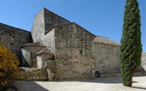 chateau de montelimar
