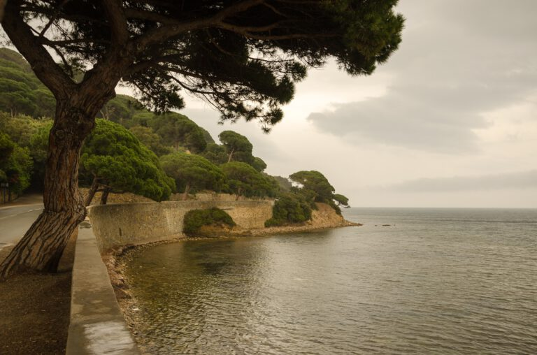 south-of-france-1700852_1920