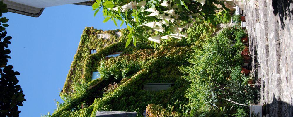Photo page STD L'histoire de Biot (Impasse des roses)